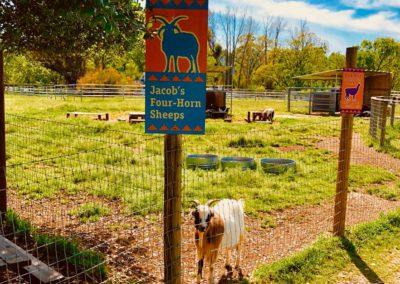 farm20